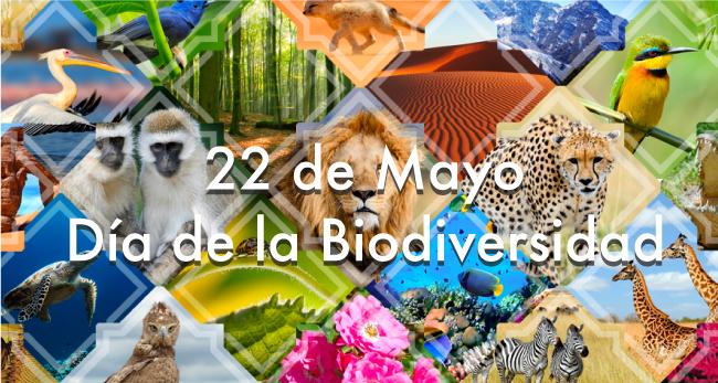 Dia-de-la-biodiversidad-p